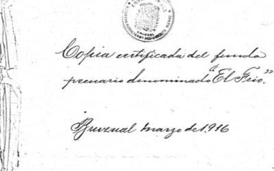"""Documento de venta de la propiedad pecuaria """"El Frío"""" por Soledad de Von Bauditz a Samuel Darío Maldonado. 16 págs."""